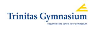 trinitas-gymnasium